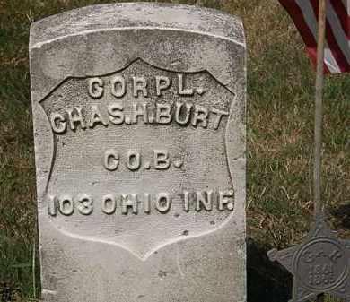BURT, CHAS. H. - Lorain County, Ohio | CHAS. H. BURT - Ohio Gravestone Photos