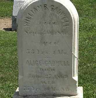 CADWELL, ALICE - Lorain County, Ohio | ALICE CADWELL - Ohio Gravestone Photos