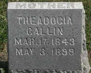 CALLIN, THEADOCIA - Lorain County, Ohio | THEADOCIA CALLIN - Ohio Gravestone Photos