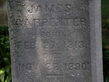 CARPENTER, JAMES - Lorain County, Ohio | JAMES CARPENTER - Ohio Gravestone Photos