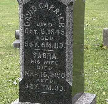CARRIER, DAVID - Lorain County, Ohio | DAVID CARRIER - Ohio Gravestone Photos