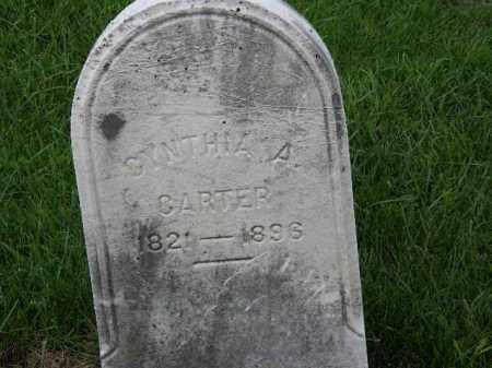 CARTER, CYNTHIA A. - Lorain County, Ohio | CYNTHIA A. CARTER - Ohio Gravestone Photos