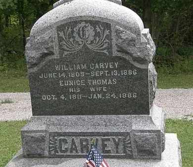 CARVEY, EUNICE - Lorain County, Ohio | EUNICE CARVEY - Ohio Gravestone Photos