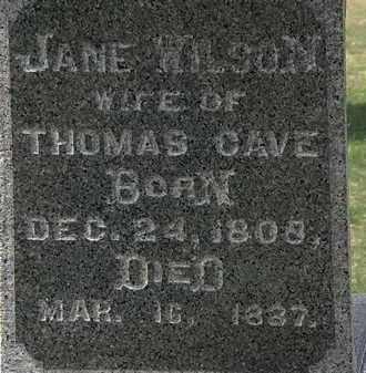 CAVE, JANE - Lorain County, Ohio | JANE CAVE - Ohio Gravestone Photos