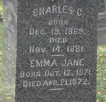 CHAMBERLAIN, EMMA JANE - Lorain County, Ohio | EMMA JANE CHAMBERLAIN - Ohio Gravestone Photos