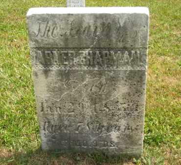CHAPMAN, ABNER - Lorain County, Ohio | ABNER CHAPMAN - Ohio Gravestone Photos