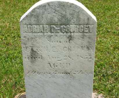 CHAPMAN, N.T. - Lorain County, Ohio | N.T. CHAPMAN - Ohio Gravestone Photos