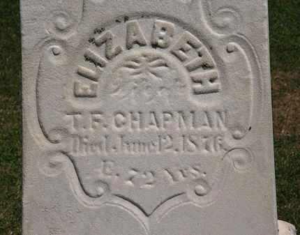 CHAPMAN, T.F. - Lorain County, Ohio | T.F. CHAPMAN - Ohio Gravestone Photos