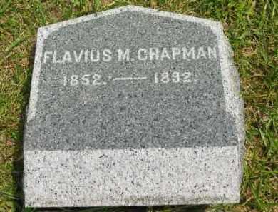 CHAPMAN, FLAVIUS - Lorain County, Ohio | FLAVIUS CHAPMAN - Ohio Gravestone Photos