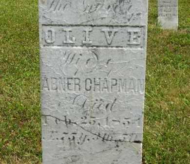 CHAPMAN, OLIVE - Lorain County, Ohio | OLIVE CHAPMAN - Ohio Gravestone Photos