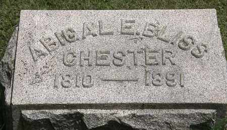 CHESTER, ABIGAL E. - Lorain County, Ohio | ABIGAL E. CHESTER - Ohio Gravestone Photos