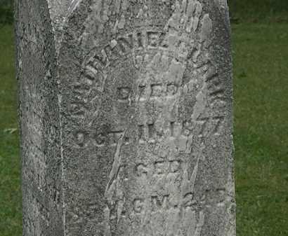 CLARK, NATHANIEL - Lorain County, Ohio   NATHANIEL CLARK - Ohio Gravestone Photos