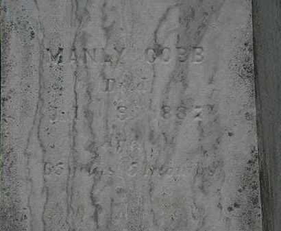 COBB, MANLY - Lorain County, Ohio | MANLY COBB - Ohio Gravestone Photos