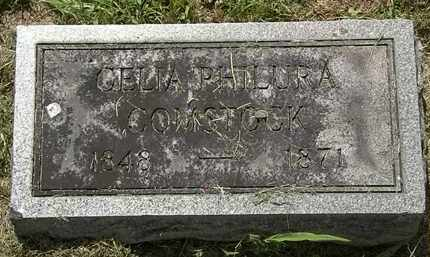 COMSTOCK, CELIA PHILURA - Lorain County, Ohio | CELIA PHILURA COMSTOCK - Ohio Gravestone Photos