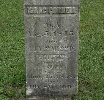 CORNELL, ANDREW - Lorain County, Ohio | ANDREW CORNELL - Ohio Gravestone Photos