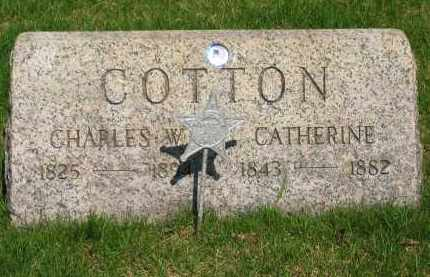 COTTON, CATHERINE - Lorain County, Ohio | CATHERINE COTTON - Ohio Gravestone Photos