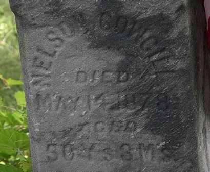 COWGILL, NELSON - Lorain County, Ohio | NELSON COWGILL - Ohio Gravestone Photos
