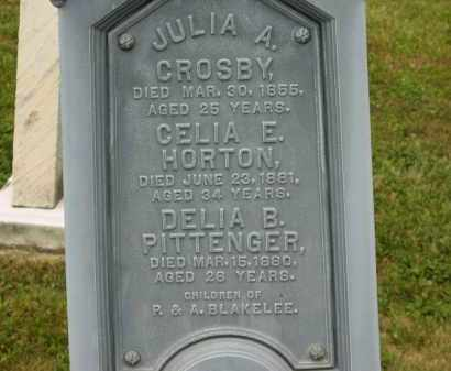 CROSBY, JULIA A. - Lorain County, Ohio | JULIA A. CROSBY - Ohio Gravestone Photos