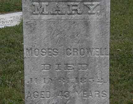 CROWELL, MARY - Lorain County, Ohio | MARY CROWELL - Ohio Gravestone Photos