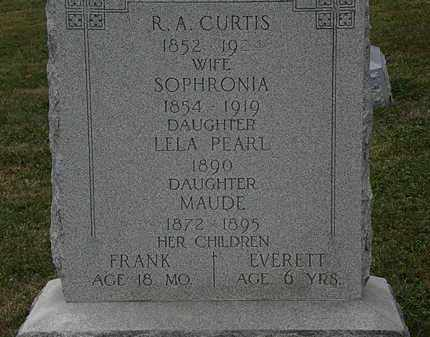 CURTIS, SOPHRONIA - Lorain County, Ohio | SOPHRONIA CURTIS - Ohio Gravestone Photos
