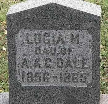 DALE, LUCIA M. - Lorain County, Ohio | LUCIA M. DALE - Ohio Gravestone Photos