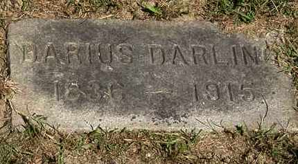 DARLING, DARIUS - Lorain County, Ohio | DARIUS DARLING - Ohio Gravestone Photos