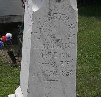 DAVIS, ELIZABETH M. S. - Lorain County, Ohio | ELIZABETH M. S. DAVIS - Ohio Gravestone Photos