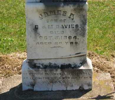 DAVIES, D. - Lorain County, Ohio | D. DAVIES - Ohio Gravestone Photos