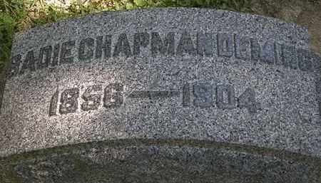 CHAPMAN DEMING, SADIE - Lorain County, Ohio | SADIE CHAPMAN DEMING - Ohio Gravestone Photos
