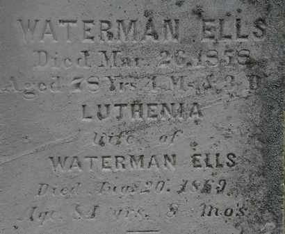 ELLS, LUTHENIA - Lorain County, Ohio | LUTHENIA ELLS - Ohio Gravestone Photos