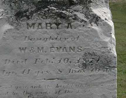 EVANS, MARY A. - Lorain County, Ohio | MARY A. EVANS - Ohio Gravestone Photos