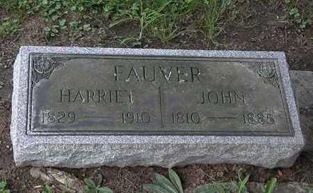 FAUVER, JOHN - Lorain County, Ohio | JOHN FAUVER - Ohio Gravestone Photos