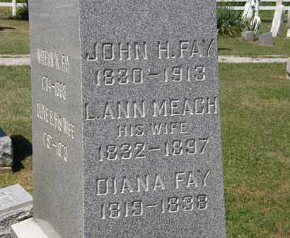 FAY, L. ANN - Lorain County, Ohio | L. ANN FAY - Ohio Gravestone Photos