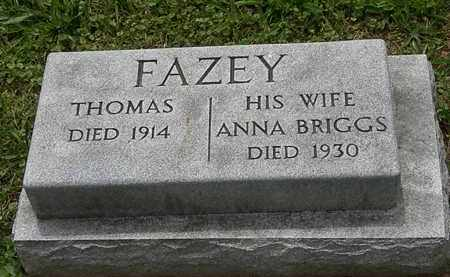 FAZEY, ANNA - Lorain County, Ohio | ANNA FAZEY - Ohio Gravestone Photos