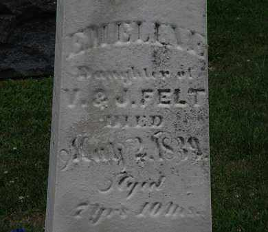 FELT, EMELINE - Lorain County, Ohio | EMELINE FELT - Ohio Gravestone Photos