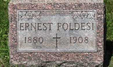 FOLDESI, ERNEST - Lorain County, Ohio | ERNEST FOLDESI - Ohio Gravestone Photos