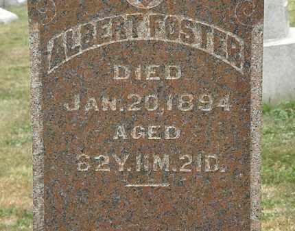 FOSTER, ALBERT - Lorain County, Ohio | ALBERT FOSTER - Ohio Gravestone Photos