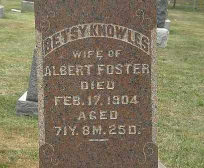 KNOWLES FOSTER, BETSY - Lorain County, Ohio | BETSY KNOWLES FOSTER - Ohio Gravestone Photos