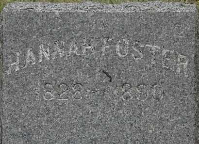 FOSTER, HANNAH - Lorain County, Ohio | HANNAH FOSTER - Ohio Gravestone Photos