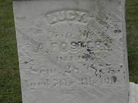 FOSTER, LUCY - Lorain County, Ohio | LUCY FOSTER - Ohio Gravestone Photos