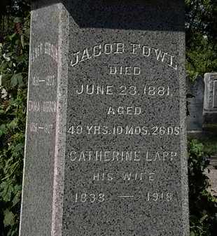 LAPP FOWL, CATHERINE - Lorain County, Ohio | CATHERINE LAPP FOWL - Ohio Gravestone Photos