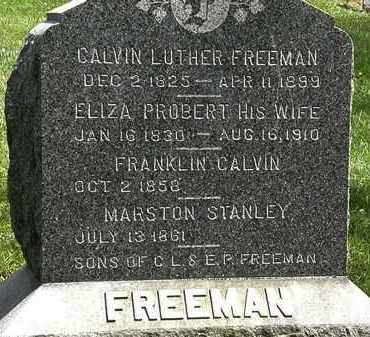FREEMAN, CALVIN LUTHER - Lorain County, Ohio | CALVIN LUTHER FREEMAN - Ohio Gravestone Photos