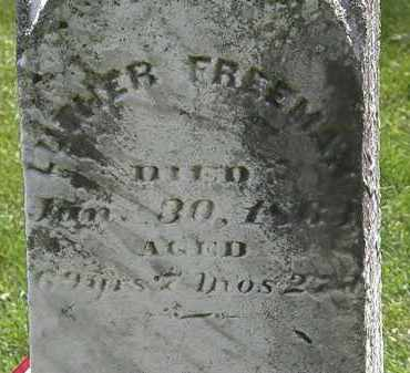 FREEMAN, LUTHER - Lorain County, Ohio | LUTHER FREEMAN - Ohio Gravestone Photos