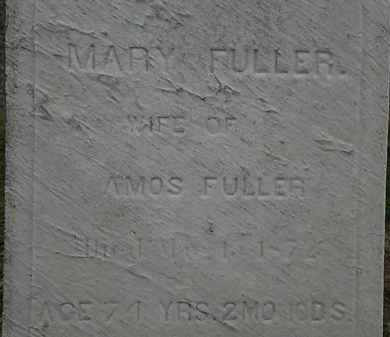 FULLER, MARY - Lorain County, Ohio | MARY FULLER - Ohio Gravestone Photos
