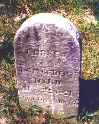 GEDERT, ANDREW - Lorain County, Ohio | ANDREW GEDERT - Ohio Gravestone Photos