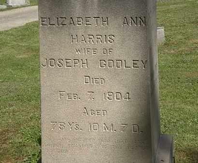 HARRIS GODLEY, ELIZABETH ANN - Lorain County, Ohio | ELIZABETH ANN HARRIS GODLEY - Ohio Gravestone Photos