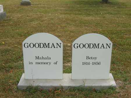 GOODMAN, BETSY - Lorain County, Ohio | BETSY GOODMAN - Ohio Gravestone Photos