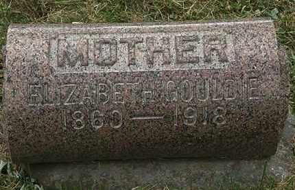 GOULDIE, ELIZABETH - Lorain County, Ohio | ELIZABETH GOULDIE - Ohio Gravestone Photos