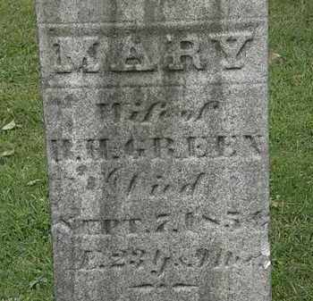 GREEN, MARY - Lorain County, Ohio | MARY GREEN - Ohio Gravestone Photos