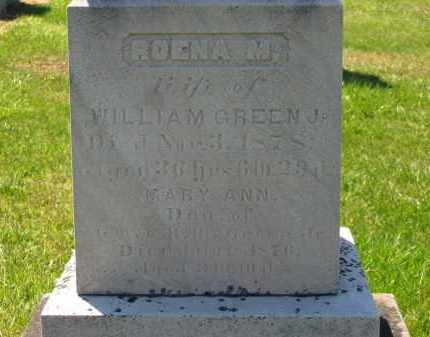 GREEN  JR., WILLIAM - Lorain County, Ohio | WILLIAM GREEN  JR. - Ohio Gravestone Photos